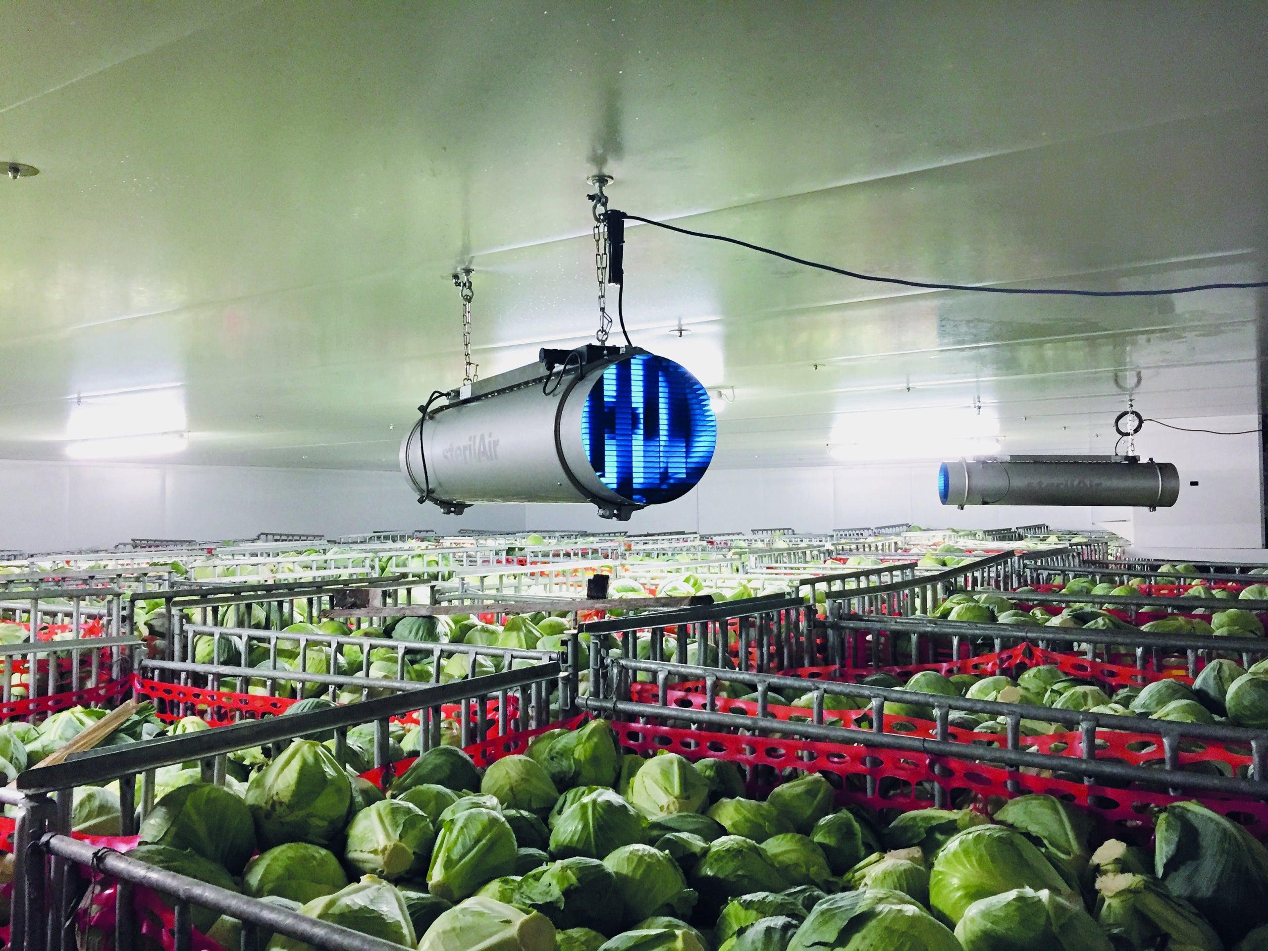 Dekontaminering af Luft i lagerrum med grøntsager - luftdesinfektion med UV-c